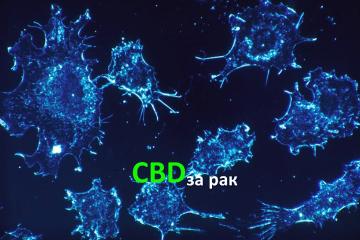 CBD за рак