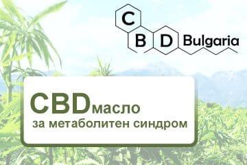 cbd-масло-за-метаболитен-синдром