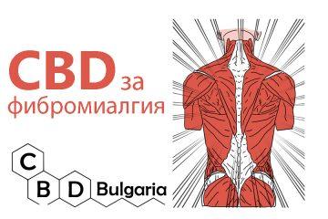 cbd-масло-за-фибромиалгия