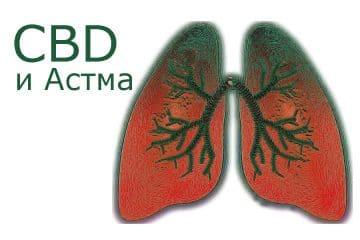 cbd-масло-и-астма-ползи-и-дозиране
